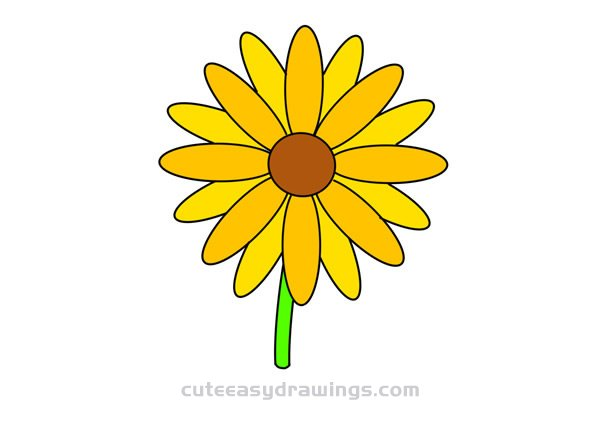 How to Draw a Daisy Flower Step by Step Easy
