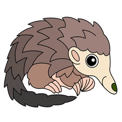 How to Draw a Pangolin Easy Step by Step for Kids
