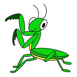 How to Draw a Praying Mantis for Kids