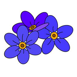 How to Draw Forget-Me-Not Flowers Easy Step by Step for Kids