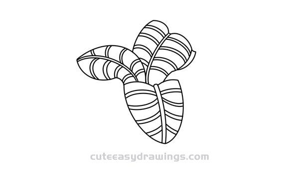 How to Draw a Cycas Easy Step by Step for Kids