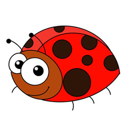 Cute Ladybug Drawing Steps for Kids