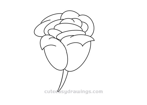 Red Rose Drawing Step by Step for Kids