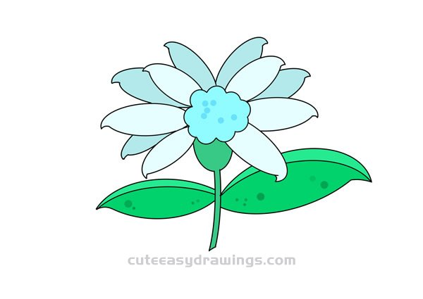 Edelweiss Drawing Easy Step by Step for Kids