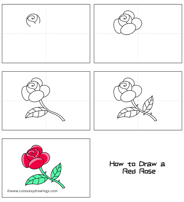 How to Draw a Red Rose Easy Step by Step for Kids