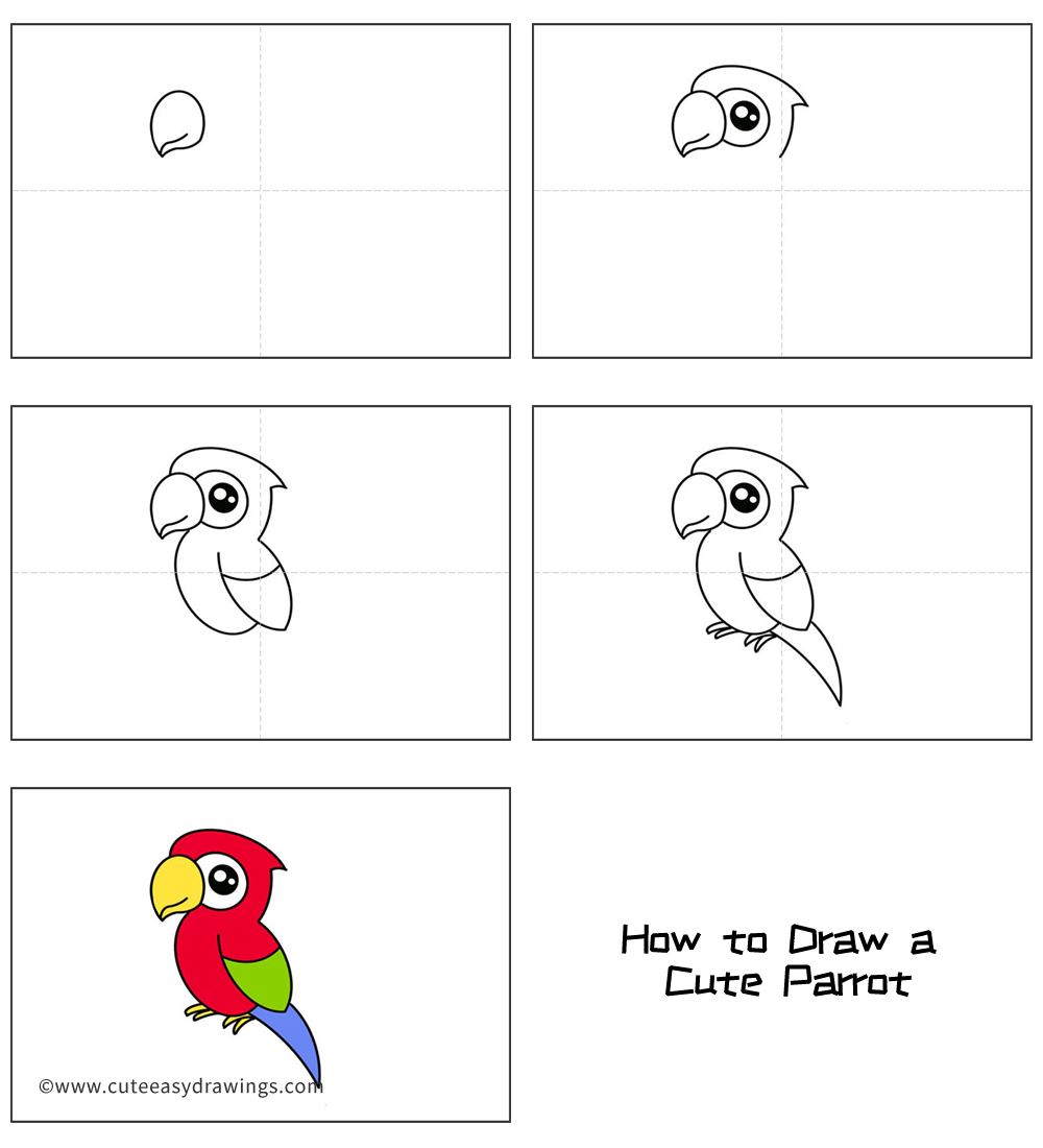 How To Draw A Cute Parrot Easy Step By Step For Kids Cute Easy Drawings