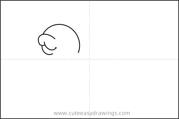 How to Draw a Cute Seal Easy Step by Step for Kids