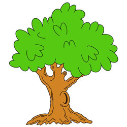 How to Draw a Green Tree Step by Step