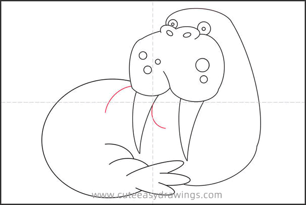 How to Draw a Walrus Resting Step by Step