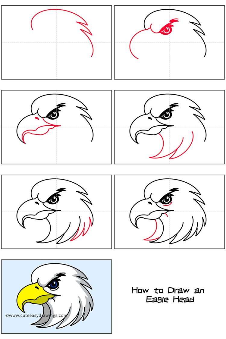 How to Draw a Cool Eagle Head Step by Step
