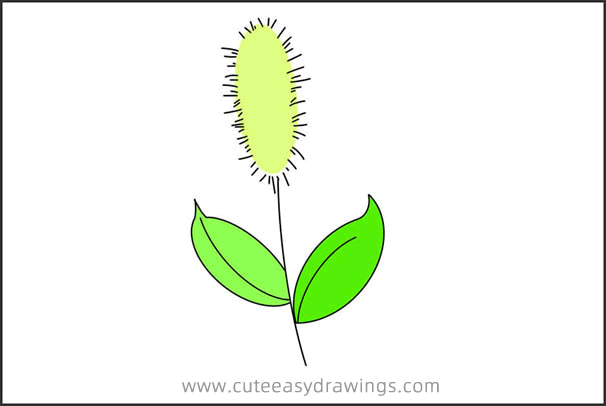 How to Draw a Green Foxtail Step by Step