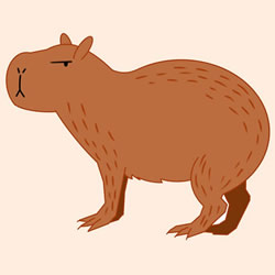How to Draw a Capybara Standing Step by Step