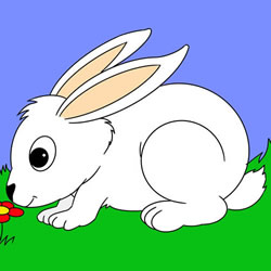 How to Draw a White Rabbit Step by Step