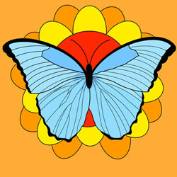 How to Draw a Butterfly on a Flower Step by Step