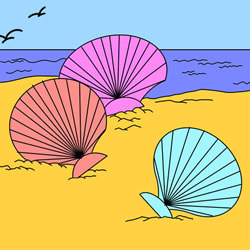How to Draw Seashells on the Beach Step by Step