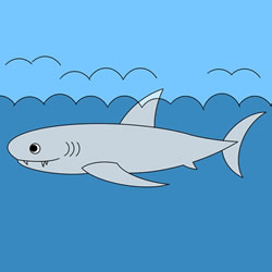 How to Draw a Shark in the Sea Step by Step