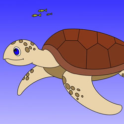 How to Draw a Sea Turtle Swimming Step by Step