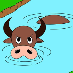 How to Draw a Buffalo in the Water Step by Step