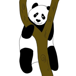 How to Draw a Panda on the Tree Step by Step