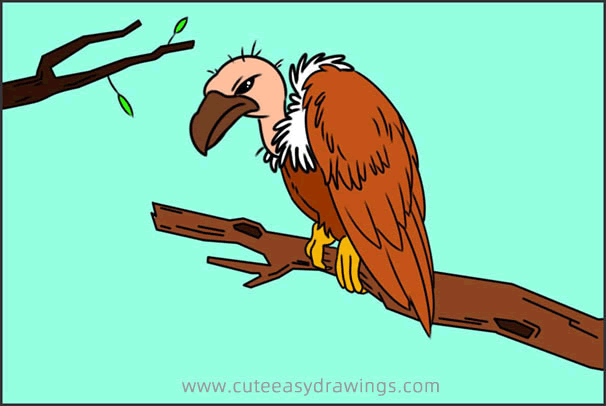 How to Draw a Vulture on the Tree Step by Step