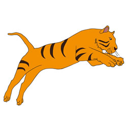 How to Draw a Tiger Jumping Step by Step