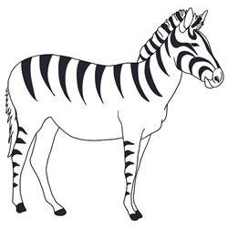 How to Draw a Zebra Standing