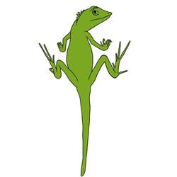 How to Draw a Small Lizard