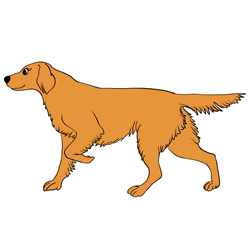 How to Draw a Dog Trotting