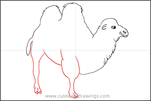 How to Draw a Realistic Camel