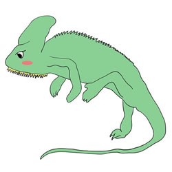 How to Draw a Lizard for Kids