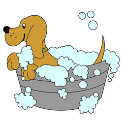 How to Draw a Dog in the Tub