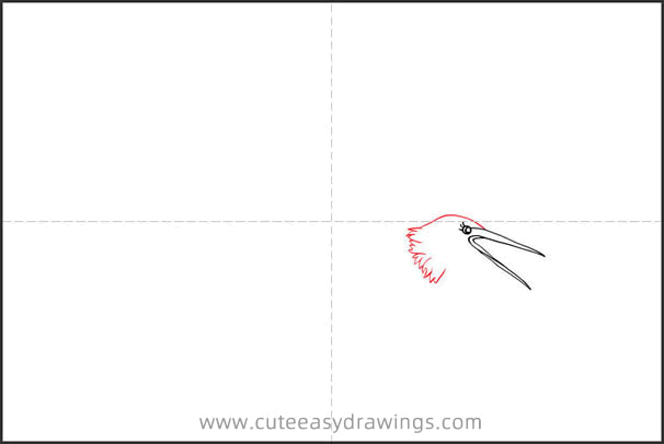 How to Draw a Crane Flying